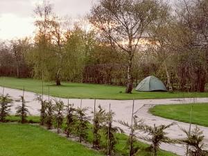 Deel van het kampeerterrein - Camping de Boerenzwaluw